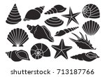 vector set of different shells... | Shutterstock .eps vector #713187766