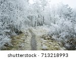 path way in hoar frost winter... | Shutterstock . vector #713218993