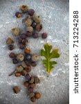 oak acorns on the ground. | Shutterstock . vector #713224288