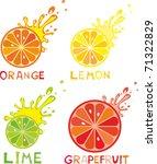 set of citrus fruit   lemon ... | Shutterstock .eps vector #71322829