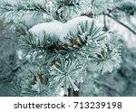 winter nature | Shutterstock . vector #713239198