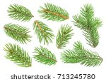 Fir Tree Branch Isolated On...