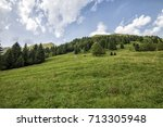pine trees in the middle of the ... | Shutterstock . vector #713305948