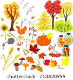 cute autumn set of plants ... | Shutterstock .eps vector #713320999