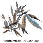 watercolor and ink illustration ... | Shutterstock . vector #713354200