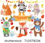 set of forest  animals. autumn...   Shutterstock .eps vector #713378236