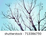 Abstract Neurons Tree