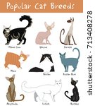 vector set of cute  popular cat ... | Shutterstock .eps vector #713408278