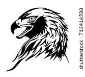 hawk's head | Shutterstock .eps vector #713416588
