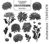 set of isolated chrysanthemum... | Shutterstock .eps vector #713451478