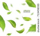 blurred fresh flying green... | Shutterstock .eps vector #713458330