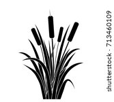 silhouette black water reed... | Shutterstock .eps vector #713460109