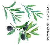 olive branch set with berries.... | Shutterstock . vector #713498653
