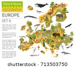 flat european flora and fauna... | Shutterstock .eps vector #713503750