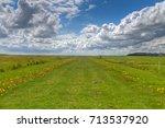 long straight path through... | Shutterstock . vector #713537920