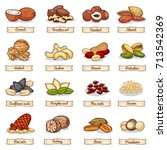 cartoon color nut and seed... | Shutterstock .eps vector #713542369