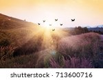 silhouette flock of birds... | Shutterstock . vector #713600716