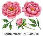 Stock photo set of watercolor peonies and leaves hand drawn floral illustration large flowers isolated on a 713606848