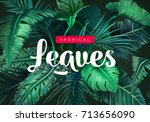 bright tropical background with ... | Shutterstock .eps vector #713656090