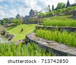 amazing asian paddy field. rice ... | Shutterstock . vector #713742850