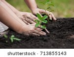 child and parent hand planting... | Shutterstock . vector #713855143