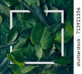 nature minimal concept   green... | Shutterstock . vector #713921356