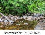 wild jungle of the island of... | Shutterstock . vector #713934604