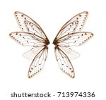wings of insect cicada on white ... | Shutterstock . vector #713974336