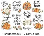 set of autumn vector... | Shutterstock .eps vector #713985406