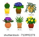houseplants and flowerpots....   Shutterstock .eps vector #713992273