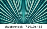 striped of palm leaf  abstract... | Shutterstock . vector #714106468