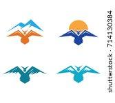 eagle bird wings in mountain...   Shutterstock .eps vector #714130384