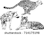 set of vector drawings on the... | Shutterstock .eps vector #714175198