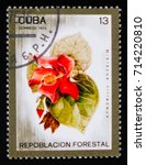 Small photo of MOSCOW, RUSSIA - AUGUST 29, 2017: A stamp printed in shows Hibiscus tiliaceus, Afforestation serie, circa 1975