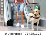blind man with guide dog near... | Shutterstock . vector #714251128