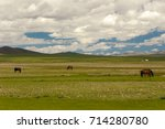 typical mongolian landscape and ... | Shutterstock . vector #714280780