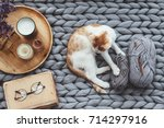 ginger kitten relaxing on... | Shutterstock . vector #714297916