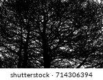 realistic tree silhouette ... | Shutterstock .eps vector #714306394