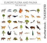 flat european flora and fauna... | Shutterstock .eps vector #714339250
