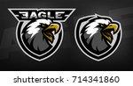 head of the eagle  sport logo....   Shutterstock . vector #714341860