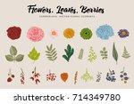 flowers  leaves  berries set....   Shutterstock .eps vector #714349780