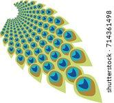 peacock feather abstract vector ...   Shutterstock .eps vector #714361498