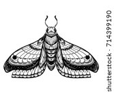 butterfly sketch. detailed... | Shutterstock .eps vector #714399190