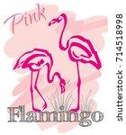 flamingos love story. hand... | Shutterstock .eps vector #714518998