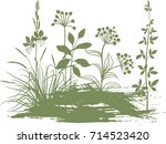 botany meadow | Shutterstock .eps vector #714523420