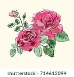 vintage watercolor blooming... | Shutterstock . vector #714612094