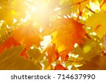 abstract autumn leaves.... | Shutterstock . vector #714637990
