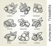 sketch of different kinds of... | Shutterstock .eps vector #714668056