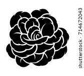 flower rose  black and white.... | Shutterstock .eps vector #714672043
