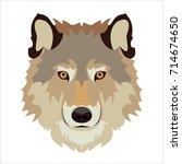 wolf's head vector illustration | Shutterstock .eps vector #714674650